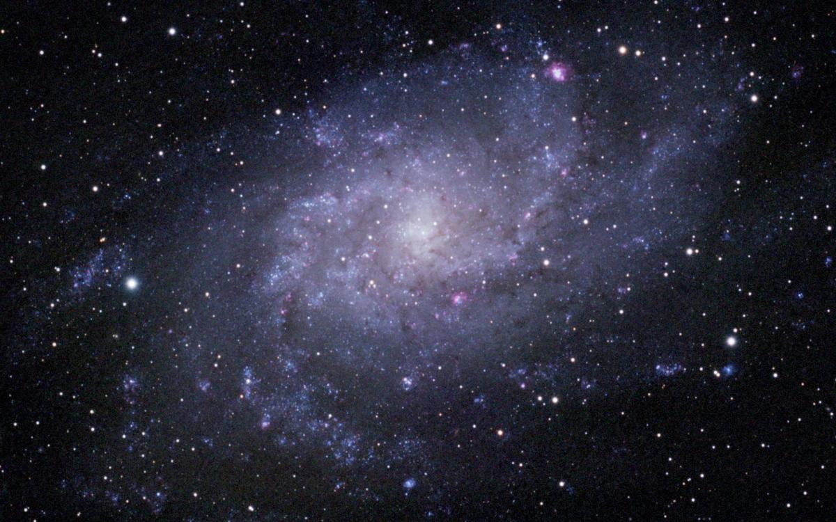Attached Image: M33 LRGB.jpg