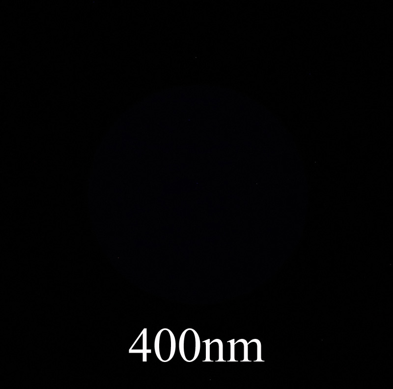 Attached Image: 578A3412 400nm cropped.jpg