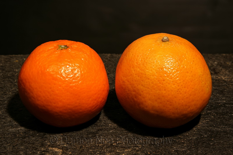 Attached Image: Clementine_Visible light©DNoe_resize.jpg