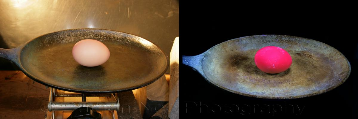 Attached Image: Whole Egg in Pan©DNoe_resize.jpg